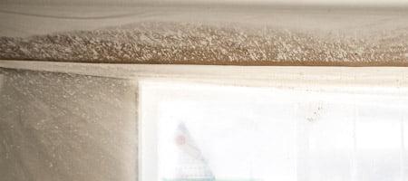 attic insulation edmonton